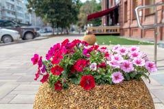 Blumenbeete in der Stadt Stockfotos