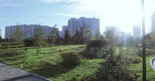 Blumenbeete und Bäume mit Büschen in der Stadt parken stock video footage
