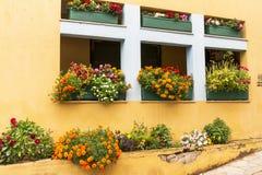 Blumenbeethaus Stockbilder