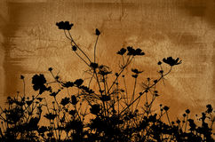Blumenbeschaffenheiten Stockfotografie