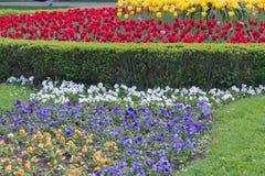 Blumenbett im formalen Garten Lizenzfreie Stockfotografie