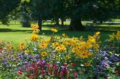 Blumenbett und -rasen Stockfoto