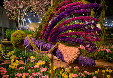 Blumenbienen-Blumen-Erscheinen Stockfoto