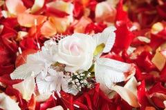 Blumenblätter Stockfotografie
