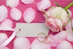 Blumenblätter auf Rosa Stockfotos