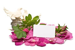 Blumenblätter, Figürchen und unbelegte Karte lizenzfreies stockfoto