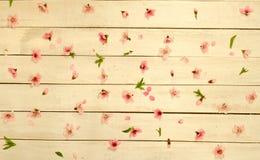 Blumenblätter zerstreuten auf hölzernen Hintergrund der Weinlese, Draufsicht Lizenzfreies Stockbild