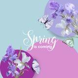 Blumenblüten-Frühlings-Fahne mit purpurroter Iris Flowers und Schmetterlingen Einladung, Plakat, Gruß-Karten-Flieger-Schablone Stockfoto