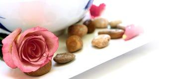 Blumenblatt- und Kieseltherapie Stockbilder