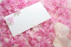 Blumenblatteinladung Stockfotos