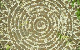Blumenblumenblätter auf der Abwasserkanalluke Lizenzfreie Stockfotos