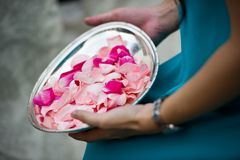 Blumenblumenblätter betriebsbereit geworfen zu werden Stockfoto