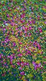 Blumenblumenblattdekoration Lizenzfreie Stockbilder