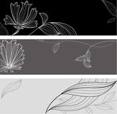 Blumenblumenkarte Stockfoto