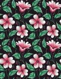 Blumenblumenmuster der nahtlosen Weinlese lizenzfreie abbildung