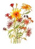 Blumenblumenstrauß Stockbild