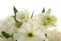 Blumenblumenstrauß auf weißem Hintergrund Lizenzfreie Stockfotografie