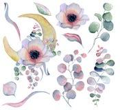 Blumenblumenstrauß und Mondphasenaquarellillustration lizenzfreie abbildung