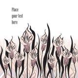 Blumenblumenstrauß-Titelsatz. Blumendekorsammlung Stockfotos