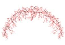 Blumenbogen gemacht Kirschblüte-Niederlassungsvektordesign Stockbild