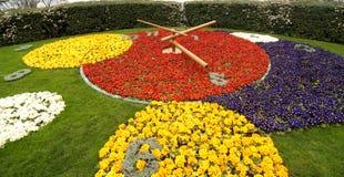Blumenborduhr Stockfotos
