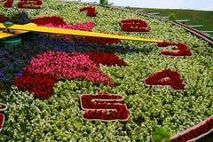 Blumenborduhr   Stockbild