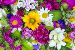 Blumenchaossommercollage Stockfotografie