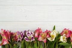 Blumendekor auf hölzernem Hintergrund Stockfotos