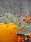 Blumender kerze Lebensdauer noch Lizenzfreie Stockbilder