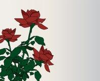 Blumeneinladung Stockbild
