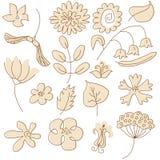 Blumenelemente Stock Abbildung