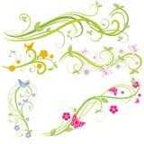 Blumenelemente Stockfotos
