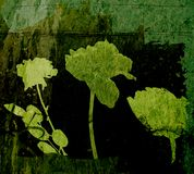 Blumenelemente auf grunge Hintergrund Lizenzfreie Stockfotos