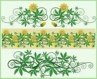 Blumenelemente und Rand. Stockfotos