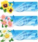Blumenfahne lizenzfreie abbildung