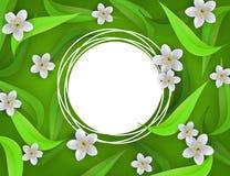 Blumenfahne mit weißen Apfel- oder Kirschblüten und Grünblättern um leeren Ausweis mit Kopienraum Lizenzfreie Stockfotos
