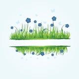 Blumenfeld mit Gras Lizenzfreie Stockfotografie