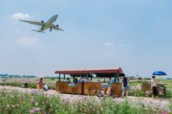 Blumenfelder nahe internationalem Flughafen Chengdus Shuangliu, China stockfoto