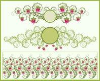 Blumenfelder und Rand Lizenzfreies Stockbild