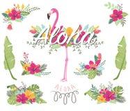 Blumenflamingo-Sammlungen lizenzfreie abbildung