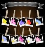 Blumenfotoalbumbildschirmanzeige Lizenzfreies Stockfoto