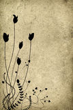 Blumenfrühlingsauszug Lizenzfreie Stockfotos