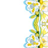 Blumenfreesieart der Irisvektorillustration vektor abbildung