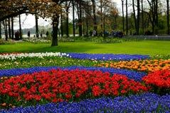 Blumengarten lizenzfreie stockbilder