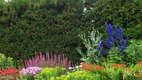 Blumengarten in der Universität von Cambridge Lizenzfreies Stockbild