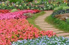 Blumengarten, Thailand Stockfotos