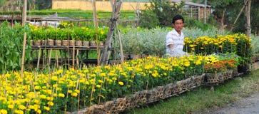 Blumengarten in Vietnam stockfotografie