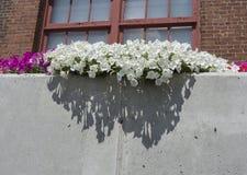 Blumengesteck draußen Stockbild