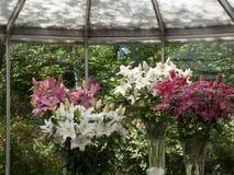 Blumengesteck in Keukenhof-Park, Amsterdam Lizenzfreies Stockfoto