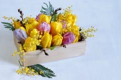 Blumengesteck von Tulpen, von Mimose und von Weide auf weißem Hintergrund Stockbilder